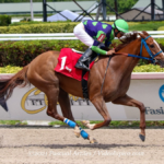 DON´T GET KHOZY  imposed with Zayas