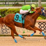 Papetu dominates the Carry Back Stakes $75,000