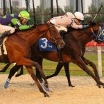 Farley prevails in the fifth race